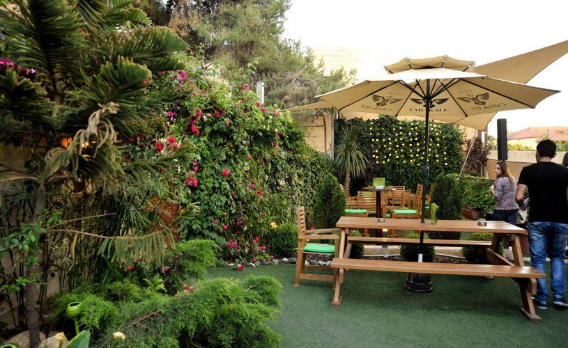 murphy's garden at the conroy boutique hotel